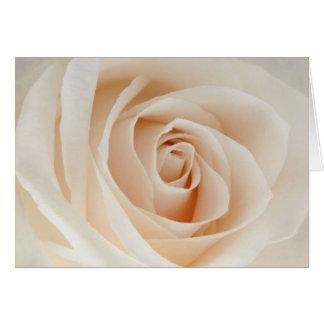Carte Rose-clair s'est levé
