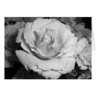 Carte Rose noir et blanc