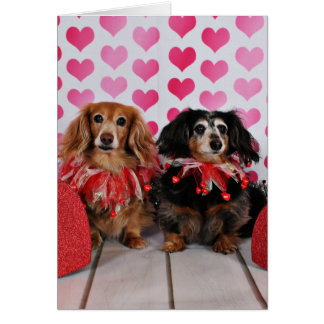 Carte Saint-Valentin - Brooklyn et Mandy - teckels