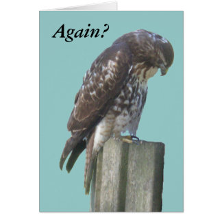 Carte - salutation - faucon retardé