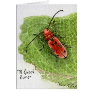 Carte Scarabée de foreur de Milkweed
