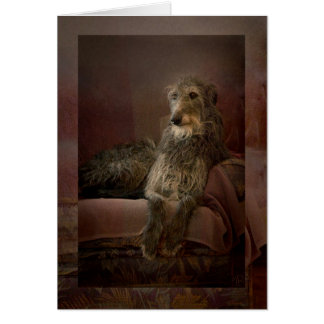 Carte Scottish deerhound on a sofa