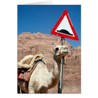 Carte signe de chameau de rhum d'oued