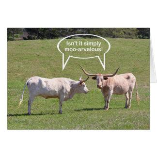 Carte Souhaits d'anniversaire du Texas Longhorn