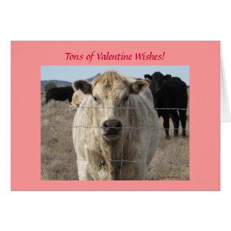 Carte Souhaits de Valentine de troupeau de bovins -