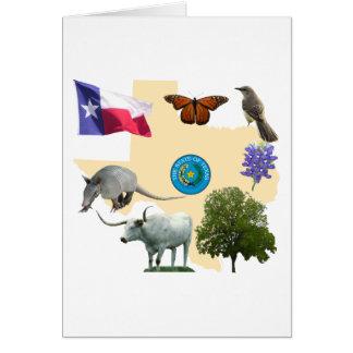 Carte Symboles d'état du Texas
