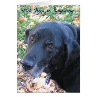 Carte Sympathie d'animal familier