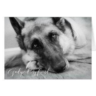 Carte Sympathie de perte d'animal familier de berger