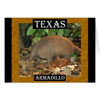 Carte Tatou du Texas