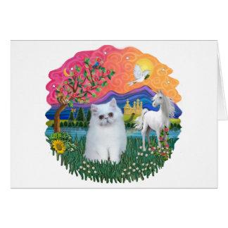 Carte Terre d'imaginaire (FF) - chaton persan (blanc)