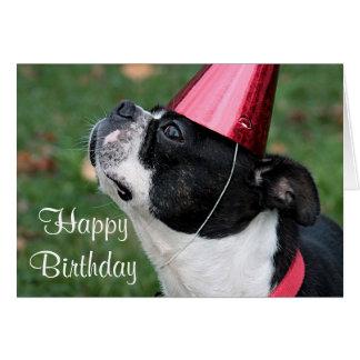 Carte Terrier de Boston avec un souhait d'anniversaire