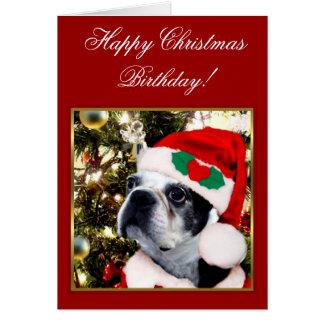 Carte Terrier de Boston d'anniversaire de Noël heureux