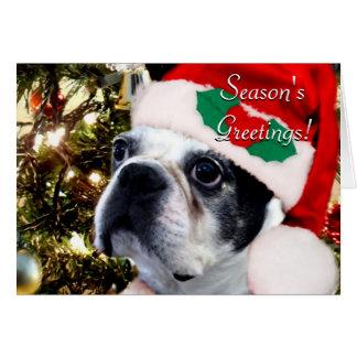 Carte Terrier de Boston de Noël de Bonnes Fêtes
