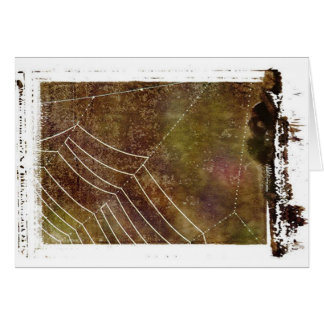 Carte Toile d'araignée #1