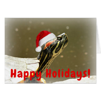 Carte Tortue dans Noël drôle de casquette de Père Noël