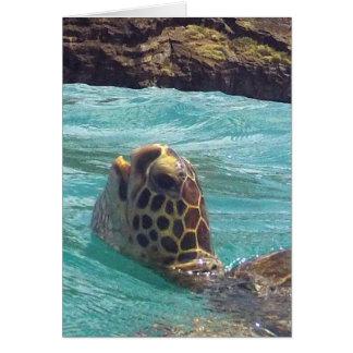 Carte Tortue d'Hawaï Honu
