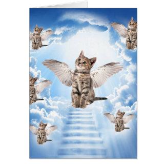 Carte Tous les chats vont au ciel