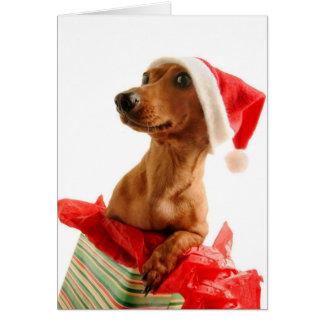 Carte Très Noël de Doxie