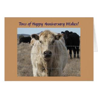 Carte Troupeau de bovins occidental d'anniversaire de