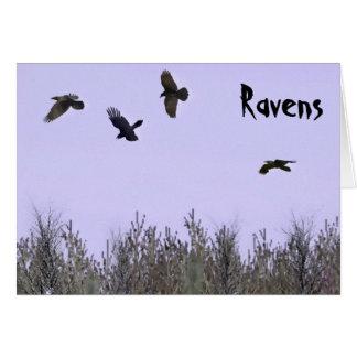 Carte Troupeau de Ravens