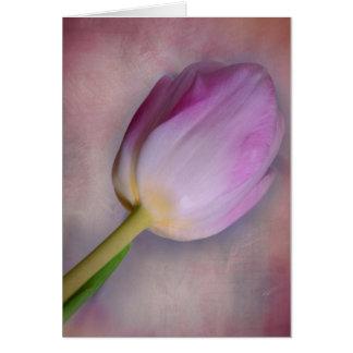 Carte Tulipe