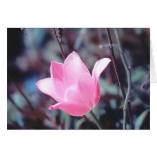 Carte tulipe rose