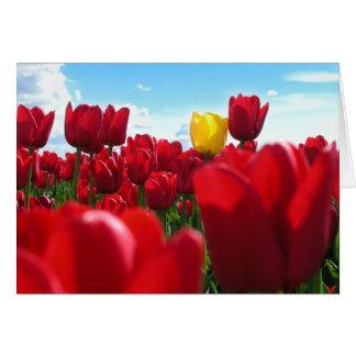 Carte Tulipes