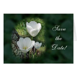 Carte Tulipes blanches épousant des économies la date