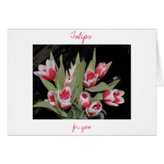 Carte Tulipes pour vous