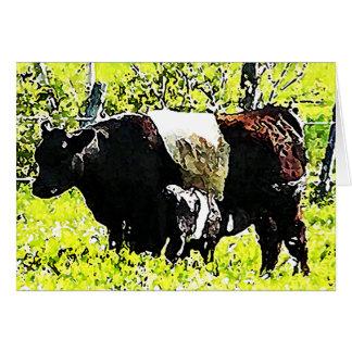 Carte Vache et veau à Oreo au Maine