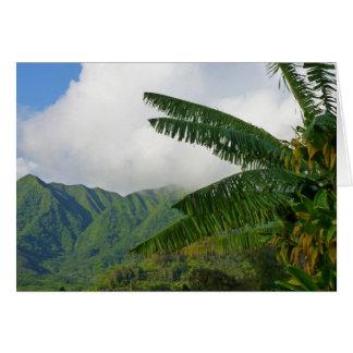 Carte Vallée de Manoa