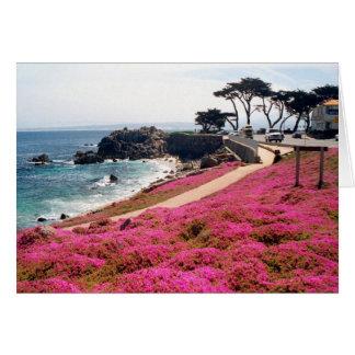 Carte Verger-Monterey Pacifique Calif