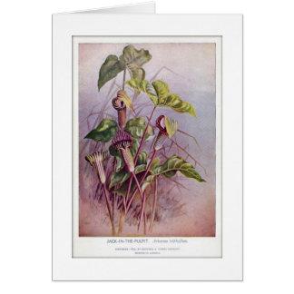 Carte vierge de fleur sauvage botanique de