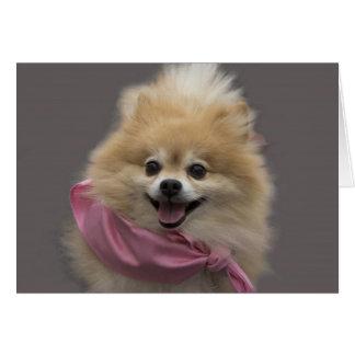 Carte vierge de note de Pomeranian par le foyer