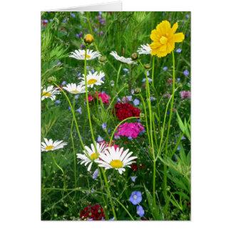 Carte vierge de note : Fleurs sauvages de ressort