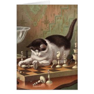 Carte vierge - série vilaine de chat - chat