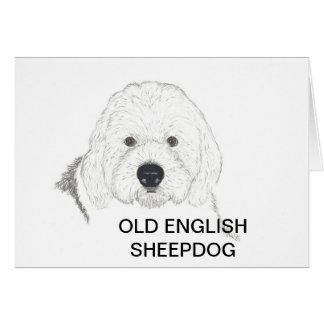 Carte vieux chien de berger anglais
