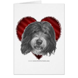 Carte Vieux chien de berger anglais avec le coeur