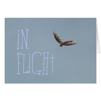 Carte Vol de cerf-volant à la côte de l'Orégon