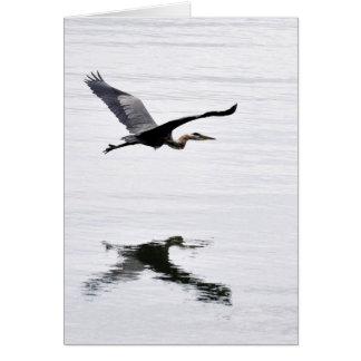 Carte Vol de héron de grand bleu