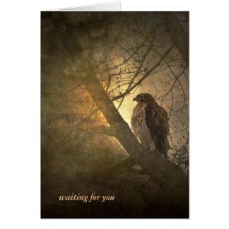 Carte vous-faucon absent dans l'arbre