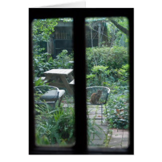 Carte Vue ©2008 de jardin