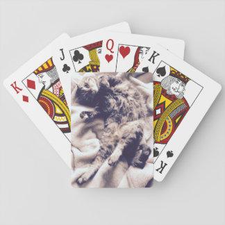 Cartes À Jouer Cartes de jeu - arachide