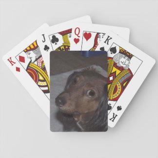 Cartes À Jouer Cartes de jeu de teckel