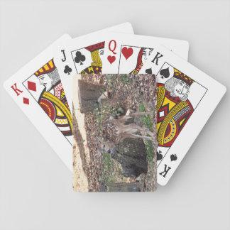 Cartes À Jouer Cartes de jeu nouveau-nées de faon