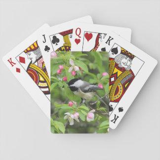 Cartes À Jouer Chickadee