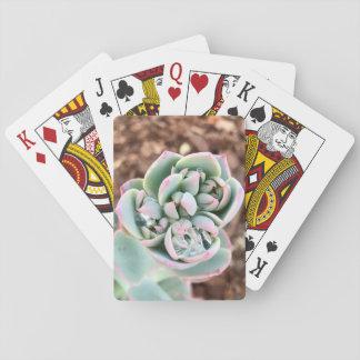 Cartes À Jouer Étincelle