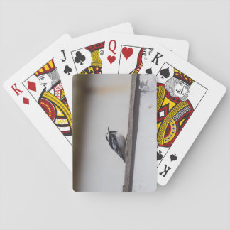 Cartes À Jouer Hochequeue pie