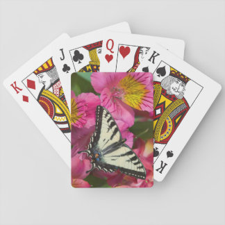 Cartes À Jouer Papillon de machaon sur le rose
