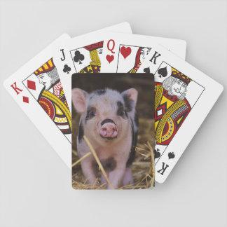 Cartes À Jouer Porc mignon doux